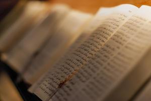 Bibles / Biblias